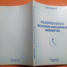 Psihopedagogia Recuperarii Handicapurilor Neuromotorii - Dumitru Motet - Carte Recuperare medicala