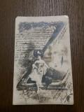 ILUSTRATA BRASOV KRONSTADT 1904, Circulata, Printata