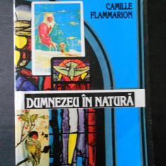 CAMILLE FLAMMARION - DUMNEZEU IN NATURA - Carte Filosofie