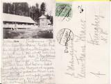 Bucovina (Suceava ) - Izvor -clasica, Circulata, Printata