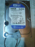 Hard-disk WD 640 GB Blue Sata2 7200 rpm 16MB+cooler nou 700 zile 99% P14, 500-999 GB, Western Digital