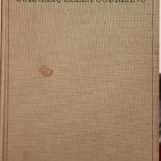 CORNELIU ZELEA CODREANU 1899 1938 MADRID 1988 50 DE ANI DE LA MOARTE LEGIONARI
