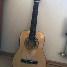 Chitara Delson - Chitara electrica