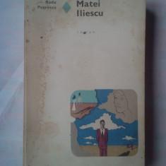 (C358) RADU PETRESCU - MATEI ILIESCU