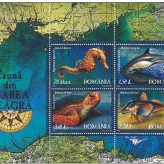 Fauna din Marea Neagra, 2007, delfini, calut de mare,  bloc , nr. lista 1755a