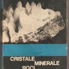 G.Mastacan-Cristale Minerale Roci