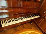 Vand pianina Ruseasca Cherny
