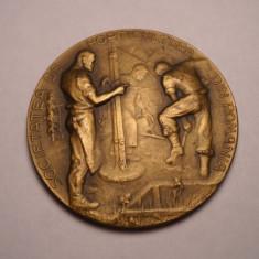 Medalie Regalista Societatea de Horticultura din Romania Superba
