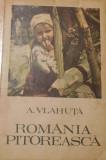 Romania pitoreasca de Alexandru Vlahuta