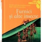 Furnici si alte insecte - Enciclopedie