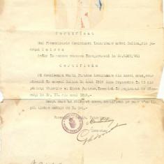 Z67 DOCUMENT VECHI-PRIMARIA URBEI SULINA 16 IUNIE1930 CERTIFICAT MARIA PARTENO