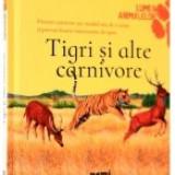 Tigri si alte carnivore - Enciclopedie