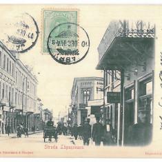 3598 - IASI, street Lapusneanu - old postcard - used - 1904 - TCV, Circulata, Printata