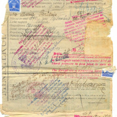 Z72 DOCUMENT VECHI-BILET DE LIBERA PETRECERE - MARIA PARTENIS -1931-1945 SULINA - Hartie cu Antet