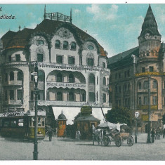 4027 - ORADEA, Market, tramway - old postcard, CENSOR - used - 1917 - Carte Postala Crisana 1904-1918, Circulata, Printata