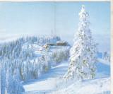 Bnk cp Felicitare necirculata - peisaj montan de iarna