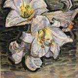 """TABLOU VASILE VARGA """"CRIN ALB"""", 1994, U/P/C, Dimensiuni: 43, 5cm. X 30cm. - Pictor roman"""
