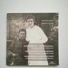Banat- Catalog Destine banatene in Primul Razboi Mondial, Timisoara, Novi Sad - Istorie