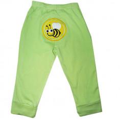 Pantaloni Carters din bumbac cu model albinuta, Marime: 12-18 luni