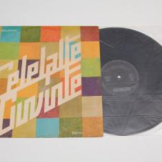 Celelalte Cuvinte – I - disc vinil ( vinyl, LP ) - Muzica Rock electrecord