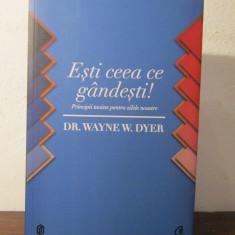 Esti ceea ce gandesti! Principii taoiste pentru zilele noastre -Wayne W. Dyer - Carte dezvoltare personala