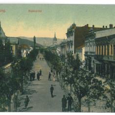 4199 - CAMPULUNG, Arges, Ave. - old postcard - used - 1912 - Carte Postala Muntenia 1904-1918, Circulata, Printata