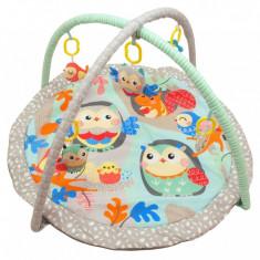 Saltea de joaca pentru copii Birds Nest - Tarc de joaca Baby Mix, Multicolor