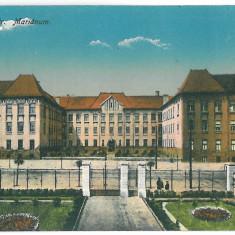 4228 - CLUJ - old postcard, CENSOR - used - 1916 - Carte Postala Transilvania 1904-1918, Circulata, Printata