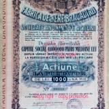 Fabrica de Bere Brigadiru SA Actiune la Purtator 1000 lei Bucuresti 1909