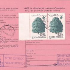 AVIS DE PRIMIRE, TIMBRE CU MARGINE DE COALA 1994, ROMANIA.