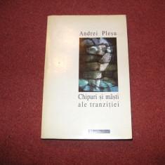 Andrei Plesu -Chipuri si masti ale tranzitiei - Filosofie