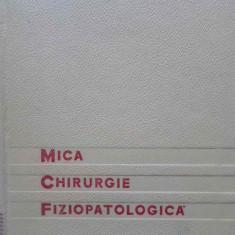 Mica Chirurgie Fiziopatologica - I. Turai, 409007 - Carte Chirurgie