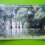 HOPCT 35188 REVARSARE LACUL GORGOVAT -DELTA DUNARII-JUD TULCEA-NECIRCULATA - Carte Postala Dobrogea dupa 1918, Printata