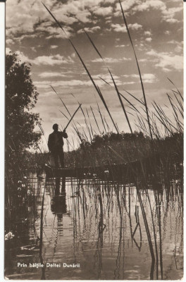 PRIN BALTILE DELTEI DUNARII  1961 foto