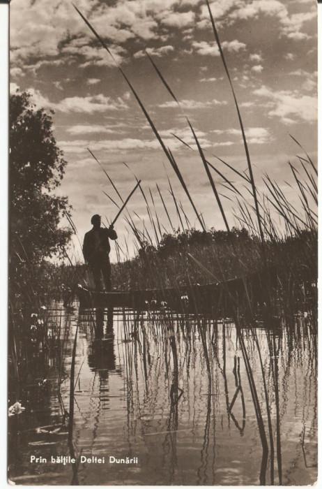 PRIN BALTILE DELTEI DUNARII  1961 foto mare