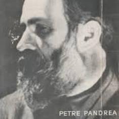 Petre Pandrea Brancusi#