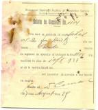 Z184 DOCUMENT VECHI-BULETIN DE VACCINARE, PENTRU MIHAIL, FIUL LUI JON HIUTZ ?