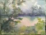 Peisaj in Delta