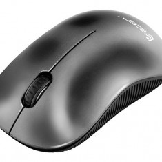Mouse wireless Tracer Nebula RF Nano USB
