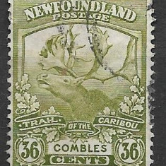 Newfoundland 1919, Stampilat