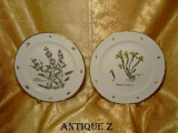 Cumpara ieftin Set doua farfurii de colectie Swiss-Langenthal, vintage