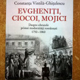 Constanta Vintila-Ghitulescu - Evgheniti, ciocoi, mojici - Istorie