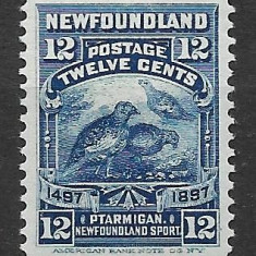 Newfoundland 1897, Nestampilat
