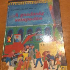 A GAZDASAG SZINPADAN - LANYINE GARAI KATALIN - CARTE COPII IN LB MAGHIARA - Carte in maghiara