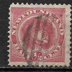 Newfoundland 1866, Stampilat