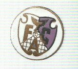 AMS - INSIGNA FOTBAL F.C. ARGES RARA!!