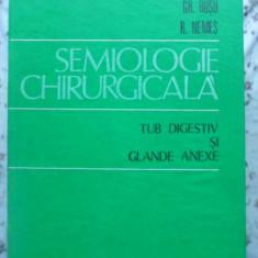 Semiologie Chirurgicala Tub Digestiv Si Glande Anexe - I. Busu, Gr. Busu, R. Nemes, 409068 - Carte Chirurgie