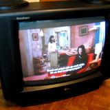 Televizor LG SoundMax