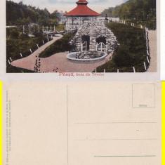 Salutari din Pitesti - Grota din Trivalea - Carte Postala Muntenia 1904-1918, Necirculata, Printata