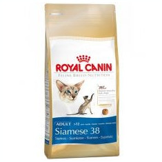 Royal Canin hrană uscată pentru pisici siameze 2 kg - Hrana pisici